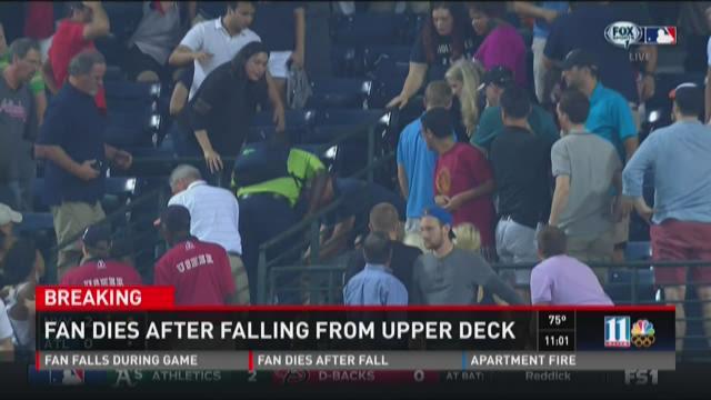 Fan dies after falling from upper deck
