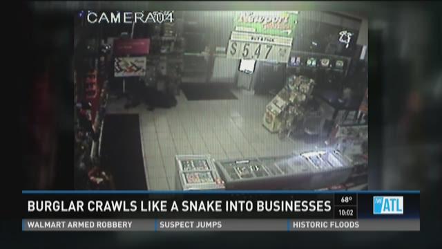 Snake burglar