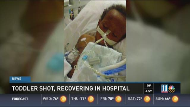Toddler recovering in hospital after shooting